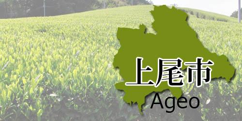 ageo-area2018