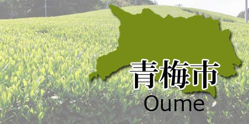 oumeshi-area2018
